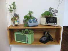 old phones container gardens photo