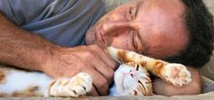 Let's Hear It for the Cat Dads
