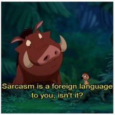 Timon and pumba discuss sarcasm