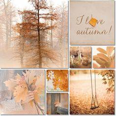 I love Autumn collage mood board Hello Autumn, Autumn Day, Autumn Leaves, Autumn Song, Inspiration Wand, Autumn Inspiration, Seasons Of The Year, Jolie Photo, Samhain