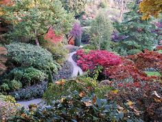 Garden Walkway Backyard Garden Design, Backyard Landscaping, Walkway Garden, Backyard Retreat, Backyard Ideas, Botanical Gardens Near Me, Buchart Gardens, Autumn Garden, Organic Gardening