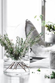 Only Deco Love: Flower bouquets on a budget Fresh Flowers, White Flowers, Beautiful Flowers, Flower Power, E Design, Floral Design, Coastal Style, Belle Photo, Home Decor Inspiration