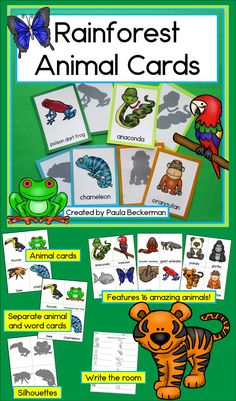 Rainforest Animal Cards for Read the Room, Matching Games, and More! Rainforest Preschool, Rainforest Classroom, Rainforest Crafts, Rainforest Theme, Rainforest Animals, Jungle Animals, Teaching Main Idea, Teaching Ideas, Preschool Activities