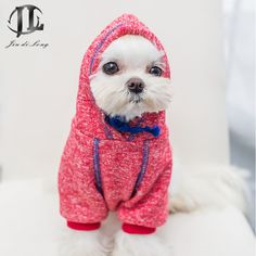 Cheap dog hoodie, Buy Quality dog hoodie sweater directly from China dog sweater hoodie Suppliers: 2017 100% Cotton Pet Clothes Spring & Summer Clothing Small Dog Clothes Cotton Casual British Style T- shirt Teddy DogUS