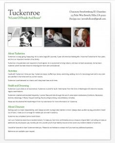 create a pet resume to help with housing and insurance for all