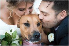 Weddings + Puppies – Real Weddings Featuring Man's Best Friend Nc Wedding Venue, Wedding Bride, Wedding Blog, Wedding Day, Mans Best Friend, Best Friends, National Puppy Day, Big Day, Lifestyle Blog
