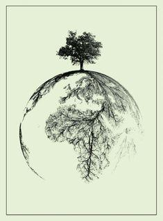DNA:o livro das raízes humanas.