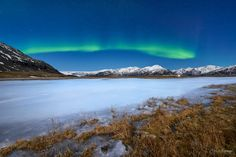 Borealis Express  Landscapes photo by cresendephotography http://rarme.com/?F9gZi