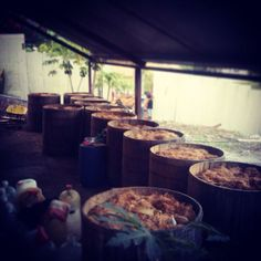 @mezcalmayalen #mezcalmayalen #agavewildcupreata #mezcaldeguererro #artesanal #agave #mexico #mezcal #organico #borego