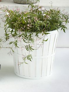 Enter for a chance to win a kalasa plant pot from @IKEA USA, as featured in our April issue. #sweeps