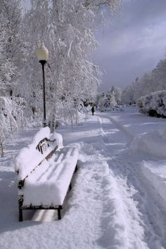 It amazes me how much I love winter pictures but I don't like when winter comes around