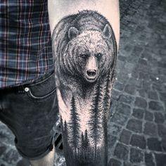 Cool bear. Taiom.