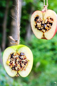 Montessori practical life activity at home idea: How to Make Apple Birdseed Homemade Bird Feeders, Apple Bird Feeders, Easy Homemade Bird Feeders, Great Fall Craft for Kids, Homemade Bird Treats, Apple Activities