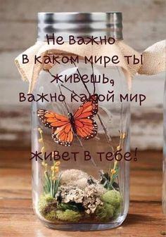 В точку!!!!-))))))