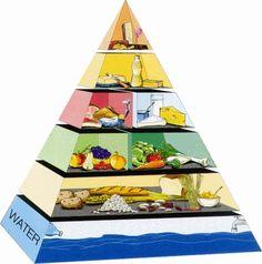 Gezonde voeding en de Schijf van Vijf - Plazilla.com