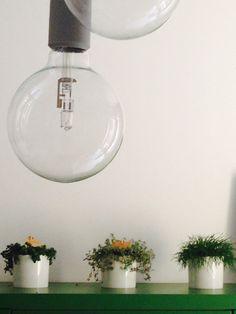 Design: muuto Lights and plant