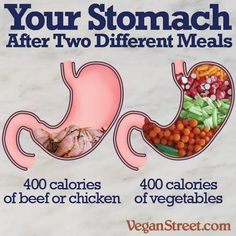 Opt for filling your stomach with a whole food plant based diet, which is healthier, more filling and satisfying - cruelty-free dining #vegan #diet #health