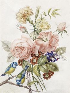 A posy of roses, carnations and auriculas with blue tits perched on a branch by Pierre Joseph Redouté