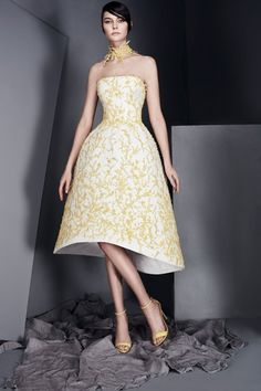 Ashi Studio Spring 2017 Couture