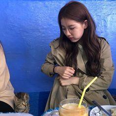 아 저리가라거.. 귀여우니까 봐줌. Suzy Instagram, Dramas, Kim Go Eun, Park Min Young, Halloween Make, Baddie Hairstyles, Gu Family Books, Bae Suzy, Korean Artist