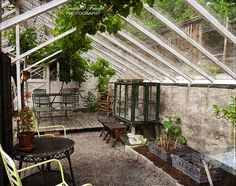 In the Greenhouse 3 by Kerstin Frank art, via Flickr