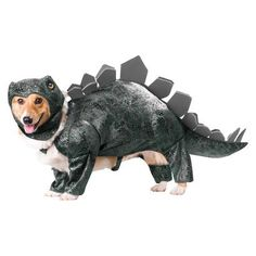 I will be Ellie Sattler (from Jurassic Park) and Frank will be my dino :)