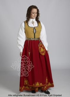 Romerike damebunad - BunadRosen AS Folk Costume, Costumes, High Neck Dress, Traditional, Live, Gull, Inspiration, Confirmation, Dresses