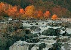 great falls in fall. on the va side.
