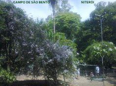 Campo de São Bento em Niterói, RJ   foto: Cida Werneck