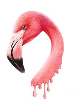 Jasmin Ekström Melting Flamingo Drawing