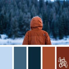 This collection of color schemes and color palettes are inspired by winter. Palettes Color, Colour Pallette, Color Palate, Bedroom Color Schemes, Colour Schemes, Color Combos, Color Patterns, Color Palette Challenge, Winter Colors