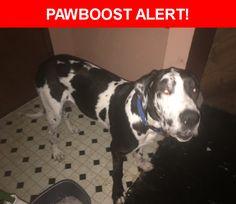 Please spread the word! Kayleb was last seen in Spokane, WA 99207.    Nearest Address: Near E Montgomery Ave & N Columbus-Morton Aly