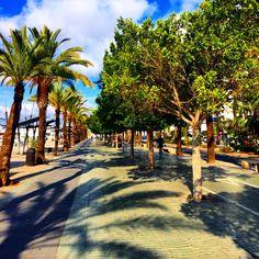 Travarella: ♚ Top 5 things to do in Ibiza that isn't clubbing ...