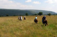 Buffalo Gorge | Horse Riding near Middelburg | Out Rides - Dirty Boots Epic Thunder, Thunder And Lightning Storm, 6 Man Tent, Abseiling, Pony Rides, Horse Grooming, Mountain Trails, Walking In Nature, Horse Art