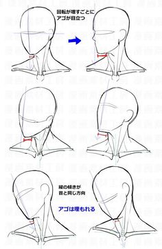 Anatomy Drawing Tutorial You Can Enjoy drawing tips With These Tips Drawing Heads, Body Drawing, Anatomy Drawing, Drawing Base, Male Face Drawing, Head Anatomy, Anime Face Drawing, Anatomy Art, How To Draw Anatomy