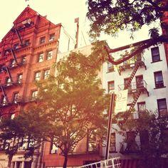 Montague St., Brooklyn Heights