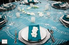 Rentals Unlimited: Spritzer Silver organza over Turquoise Bengaline linen with Teal Bengaline napkin, Silver Octagonal charger, Hammered Flatware, Classico Glassware. Eloquent Images Photography
