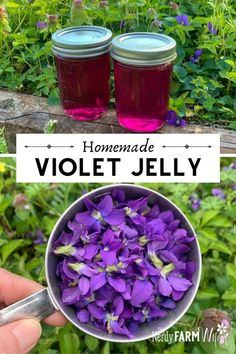 How to Make Homemade Violet Flower Jelly (Tastes delicious, similar to grape jelly! Jelly Recipes, Jam Recipes, Canning Recipes, Potato Recipes, Vegetable Recipes, Vegetarian Recipes, Gelatin Recipes, Grape Recipes, Dinner Recipes