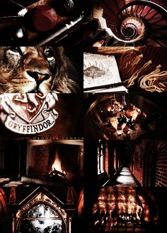 WHO ARE WE FIGHTING FOR?!?!? GRYFFINDOR!!! GIVIN IT ALL FOR RED AND GOLD!!! AND WHO ARE FIGHTING FOR?!??!!!! GRYFFINDOR!!! THIS IS BATTLE!!! THIS IS WAR!!!!