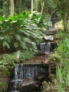 Pequena cachoeira.  Jardim Botânico - Rio de Janeiro