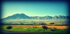 Tulbagh, Cape Town. Photographer Amanda Millard