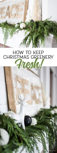 How To Keep Christmas Greenery Fresh! Great tips on how to keep Christmas greenery fresh for weeks! It will last for the entire season so Diy Christmas Garland, Christmas Greenery, Christmas Mantels, Outdoor Christmas, Christmas Home, Christmas Holidays, Christmas Crafts, Christmas Decorations, Holiday Decorating