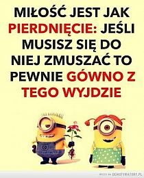 Funny Minion Memes, Weekend Humor, Scary Funny, Funny Mems, Romantic Quotes, Fun Learning, Motto, Best Quotes, Funny Pictures