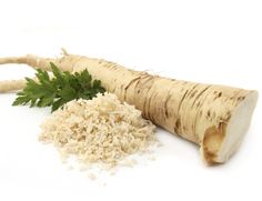 What is horseradish? Growing and cooking with horseradish - preparation, substitutions, horseradish sauce recipe. Health benefits of horseradish. How To Make Horseradish, Horseradish Recipes, Fresh Horseradish, Horseradish Sauce, Homemade Horseradish, Natural Spice, Perennial Vegetables, Weight Loss Herbs, Natural Antibiotics