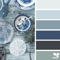 today's inspiration image for { color blues } is by @anniebluelowry ... thank you, Anna, for another gorgeous #SeedsColor image share!