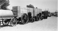 Mule Team And Wagon | 20 Mule Team Wagons