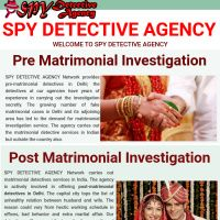 Infographic: spy detective agency