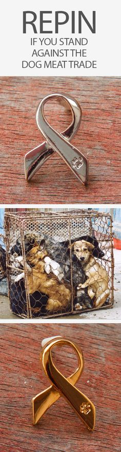Love these anti-animal abuse pins! Every purchase helps end the Dog Meat trade in Southeast Asia. http://iheartdogs.com/shop/?design=Anti-Animal-Abuse-Ribbon&utm_source=PinterestAd_RepinDogMeat&utm_medium=link&utm_campaign=PinterestAd_RepinDogMeat