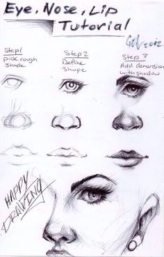 Draw A Face Tutorial Eyes Lips Nose