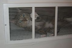 Kitty cat - http://www.hvac-hacks.com/kitty-cat/